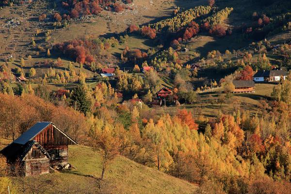 Wall Art - Photograph - Romania, Transylvania, Magura, Piatra by Emily Wilson
