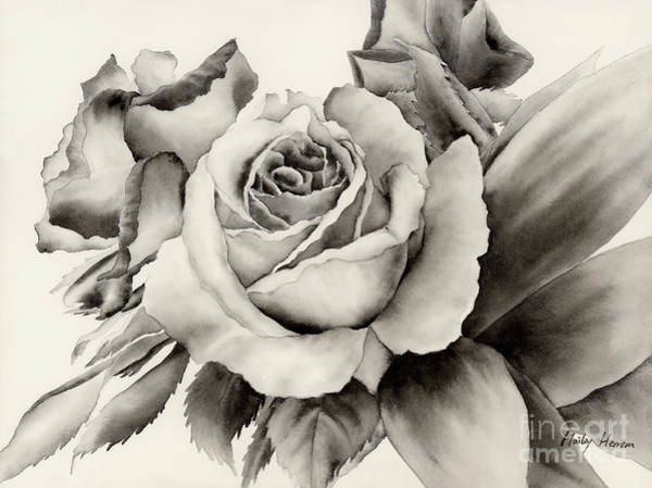 Monochrome Painting - Rose Bouquet by Hailey E Herrera