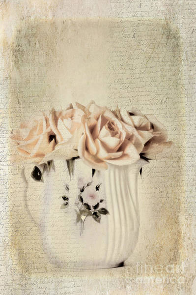 Peachy Wall Art - Photograph - Roses by Darren Fisher