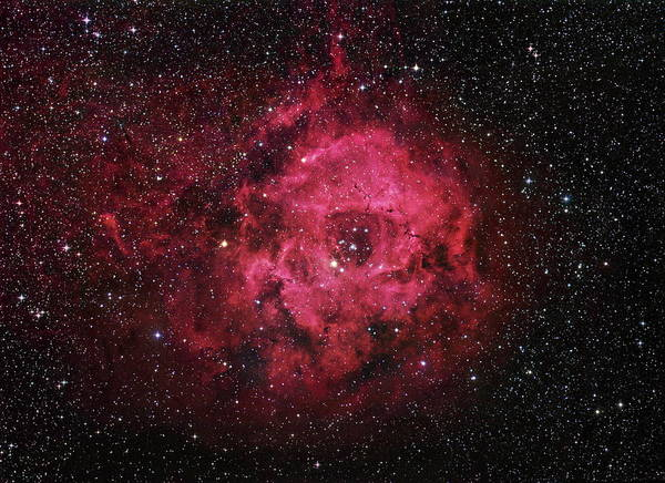 Wall Art - Photograph - Rosette Nebula by Robert Gendler/science Photo Library
