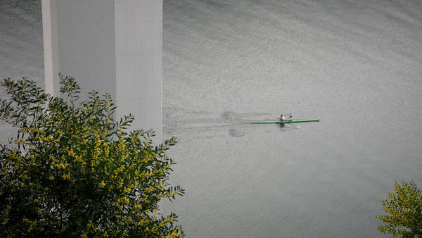 Photograph - Rower On Douro by Ari Salmela