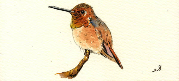 Small Birds Painting - Rufous Hummingbird by Juan  Bosco