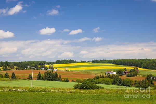 Photograph - Rural Landscape by Elena Elisseeva