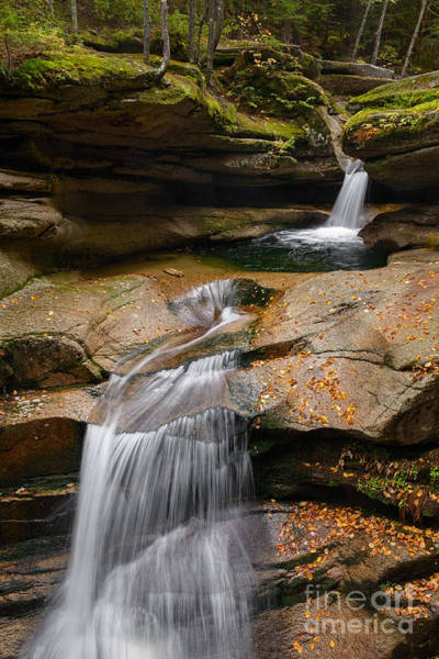 Photograph - Sabbaday Falls by Sharon Seaward