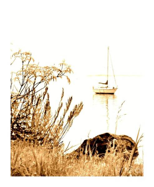 Photograph - Sailboat by Barbara Henry