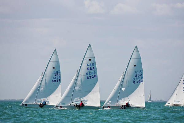 Bacardi Photograph - Sailboat In Bacardi Star Regatta by Panoramic Images