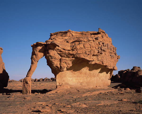 Sahara Photograph - Sandstone Arch by David Parker/science Photo Library