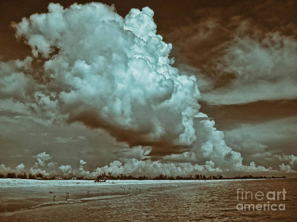 Photograph - Sanibel In Sepia by Jeff Breiman