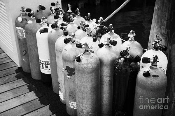 Compressor Photograph - Scuba Air Tanks Lined Up On Jetty To Be Filled In Harbour Key West Florida Usa by Joe Fox