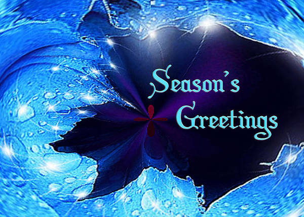Blue Wall Art - Mixed Media - Season's Greetings by Paula Ayers