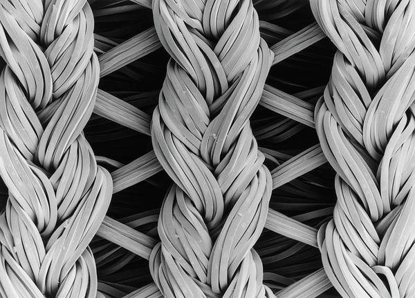 Wall Art - Photograph - Sem Of Lycra/nylon Woven Fabric by Dr Jeremy Burgess/science Photo Library