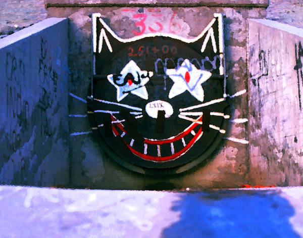 Wall Art - Photograph - Sewer Cat by Ron Regalado
