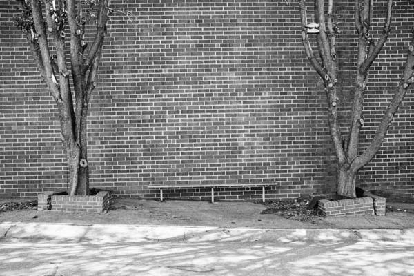 Photograph - Sneakers And A Bench by Patrick M Lynch