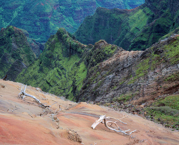 Waimea Canyon Photograph - Soil Erosion On The Sides Of A Canyon by Simon Fraser/science Photo Library