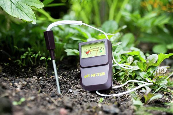 Soil Science Wall Art - Photograph - Soil Ph Meter by Science Photo Library