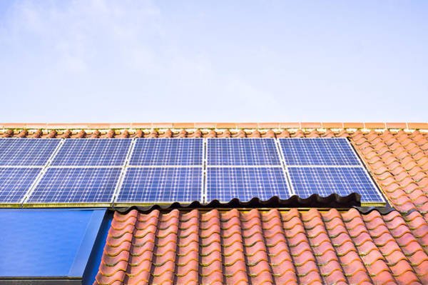 Conserved Photograph - Solar Panels by Tom Gowanlock