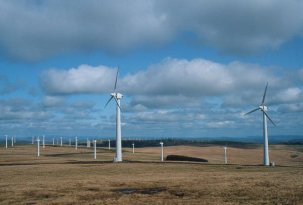 Wind Farm Photograph - Some Of The Turbines Forming A Wind Farm In Wales by David Taylor/science Photo Library