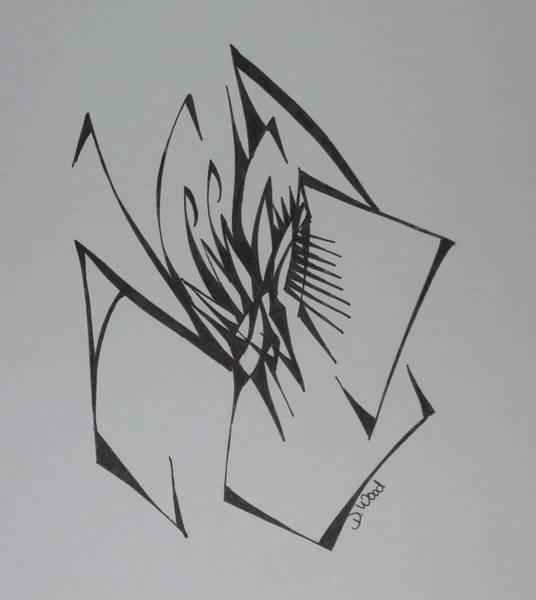 Organic Abstraction Drawing - Spider by D Wood