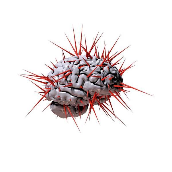 Neurology Photograph - Spiky Brain by Russell Kightley