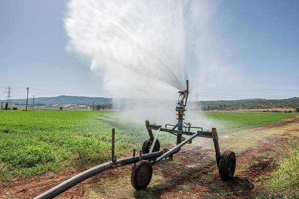 Wall Art - Photograph - Spray Irrigation Of Alfalfa Field by David Parker/science Photo Library