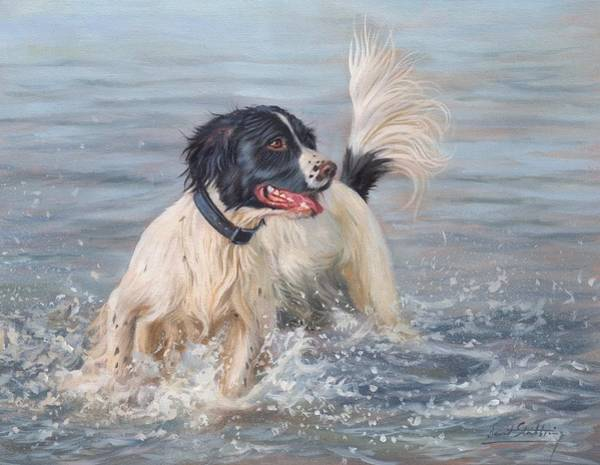 Springer Spaniel Painting - Springer Spaniel by David Stribbling