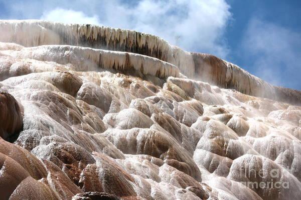 Photograph - Steamy Mammoth Hot Springs by Carol Groenen