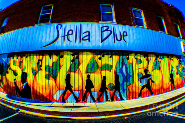 Photograph - Stella Blue by Michael Arend