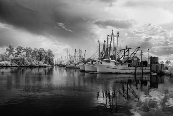 Swan Boats Photograph - Storm Coming by Cindy Archbell