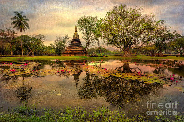 Water Lillies Photograph - Sukhothai Historical Park by Adrian Evans