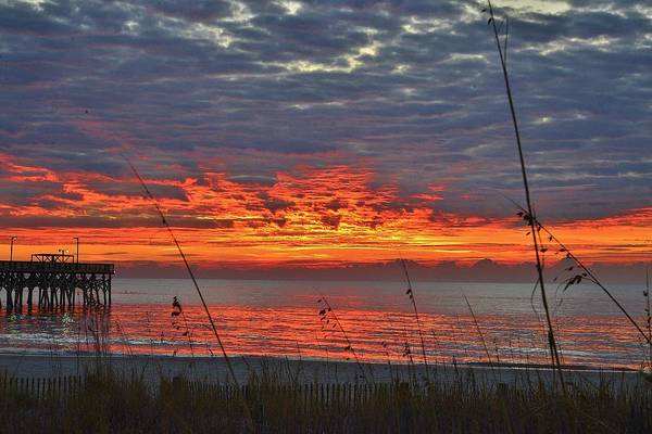 Photograph - Sunrise by Bill Hosford