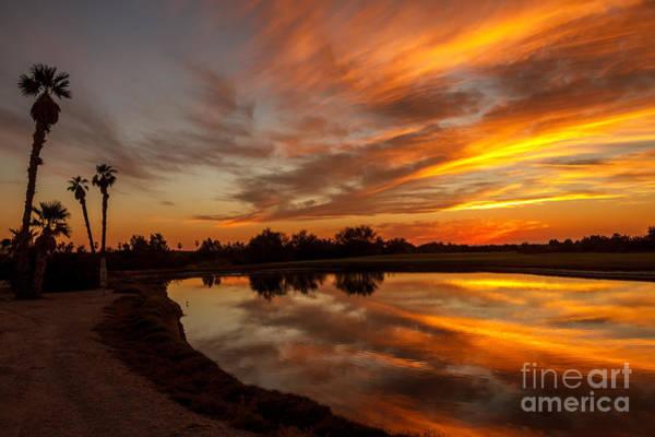 Yuma Photograph - Sunset Reflections by Robert Bales