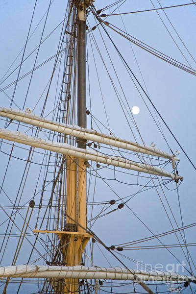 Photograph - Tall Ship by Jim West