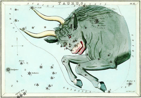 Wall Art - Photograph - Taurus Constellation by Royal Astronomical Society/science Photo Library