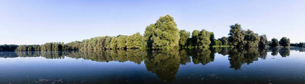 Danube Photograph - The Gemenc Forest In The Danube-drava by Martin Zwick