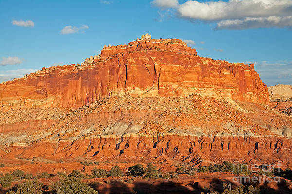 The Goosenecks Capitol Reef National Park Art Print