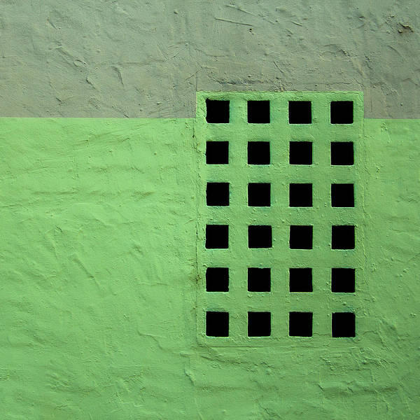 Photograph - The Green Grid by Lee Harland