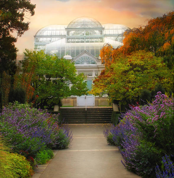 Photograph - The Greenhouse by Jessica Jenney