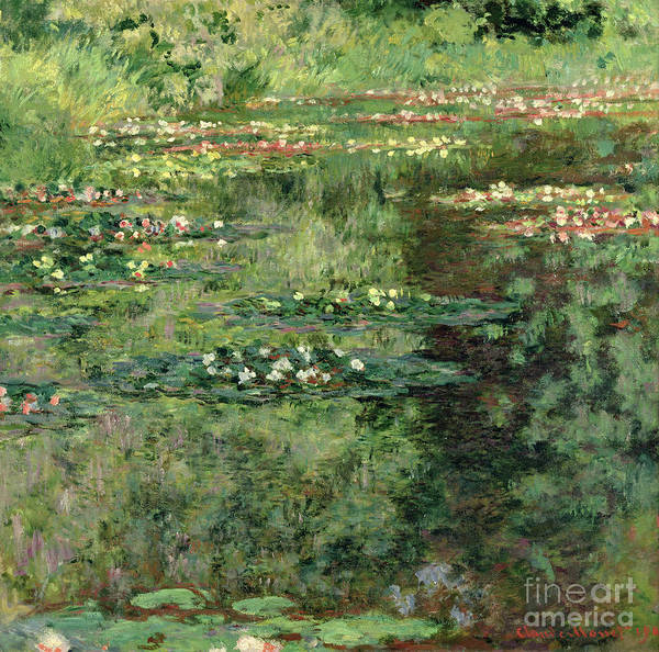 Botanic Painting - The Waterlily Pond by Claude Monet