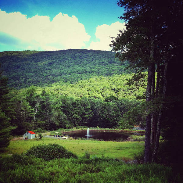 Catskills Photograph - There Now by Natasha Marco