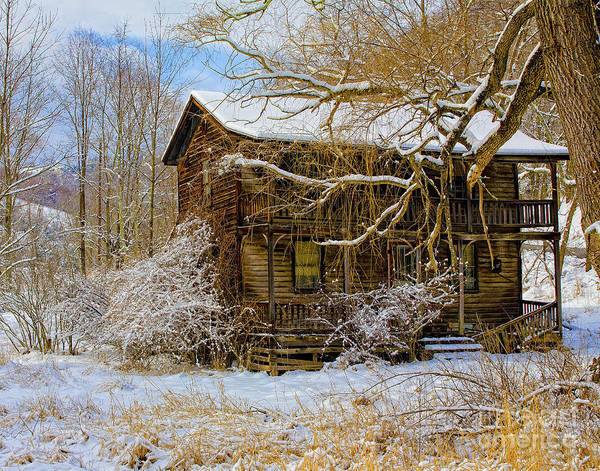 Photograph - This Old House by Ronald Lutz