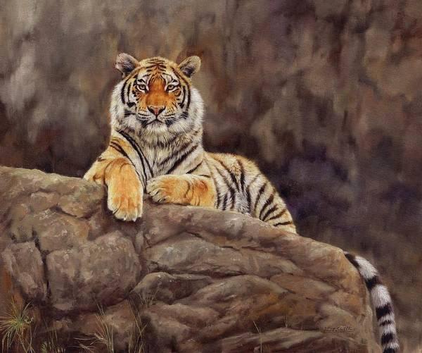Siberian Tiger Wall Art - Painting - Tiger by David Stribbling