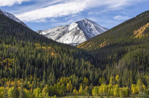 Timberline Photograph - Torreys Peak  by Aaron Spong