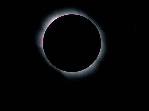 Totality Photograph - Total Solar Eclipse by Dan Schechter/science Photo Library