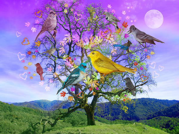 Happiness Photograph - Tree Of Happiness by MGL Meiklejohn Graphics Licensing