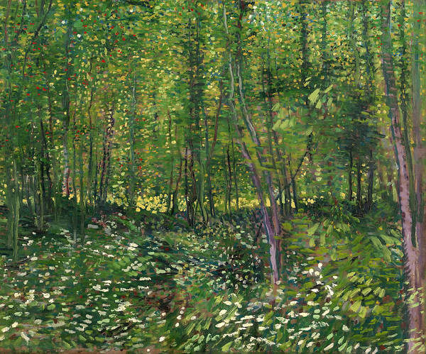 Wall Art - Painting - Trees And Undergrowth by Vincent van Gogh