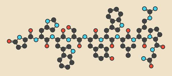 Released Photograph - Triptorelin Drug Molecule by Molekuul