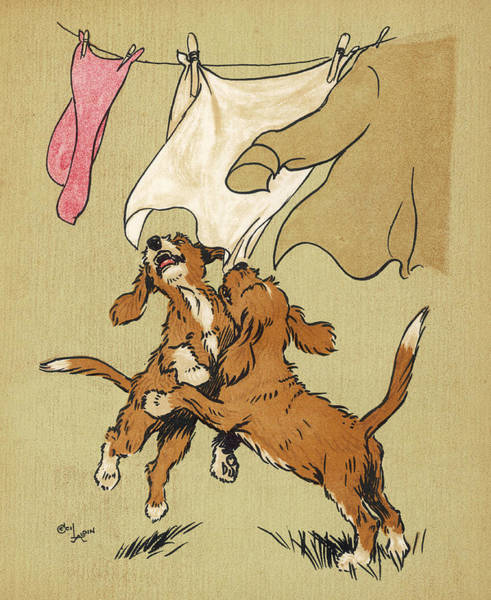 Naughty Dog Wall Art - Drawing - Twin Puppies, Snip And Snap by Mary Evans Picture Library
