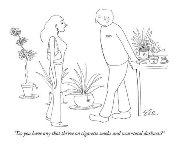 Plant Drawing - Do You Have Any That Thrive On Cigarette Smoke by Emily S. Hopkins
