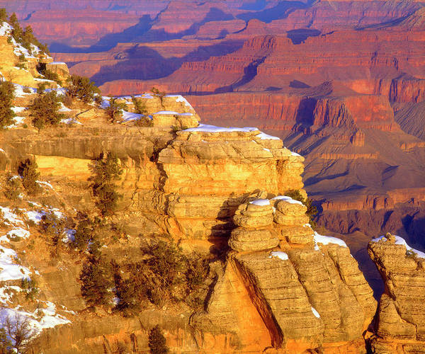 Petrified Wood Photograph - Usa, Arizona, Grand Canyon National by Jaynes Gallery