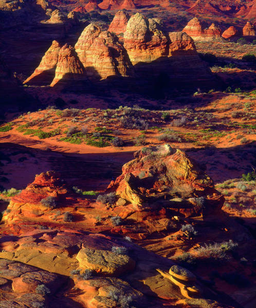 Paria Canyon Photograph - Usa, Arizona, Sandstone Formations by Jaynes Gallery